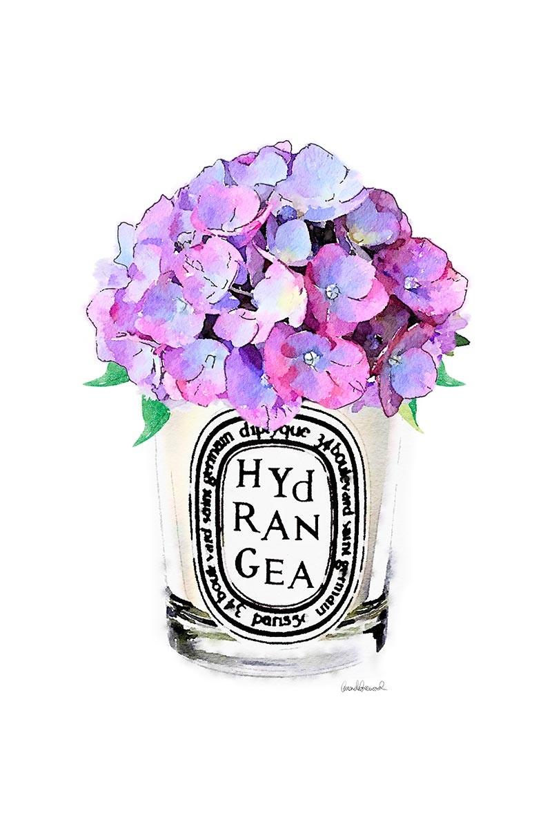 Candle & Hidrangea