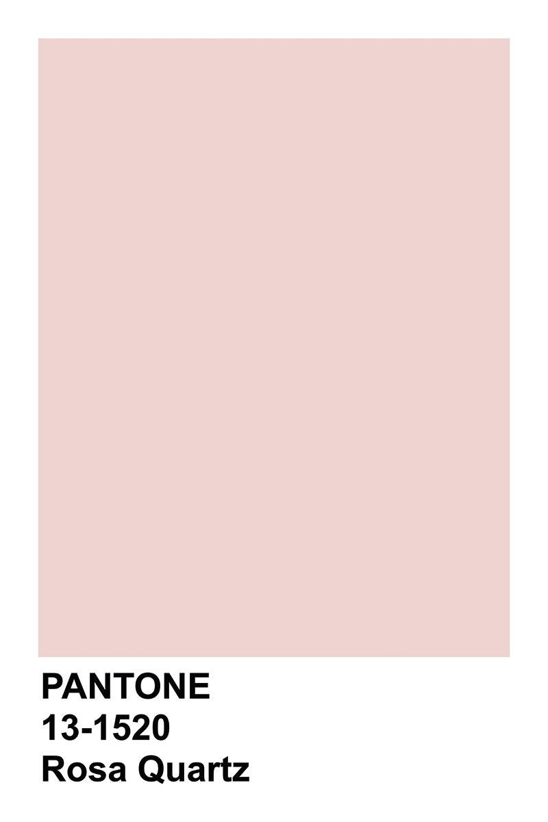 Pantone Rosa