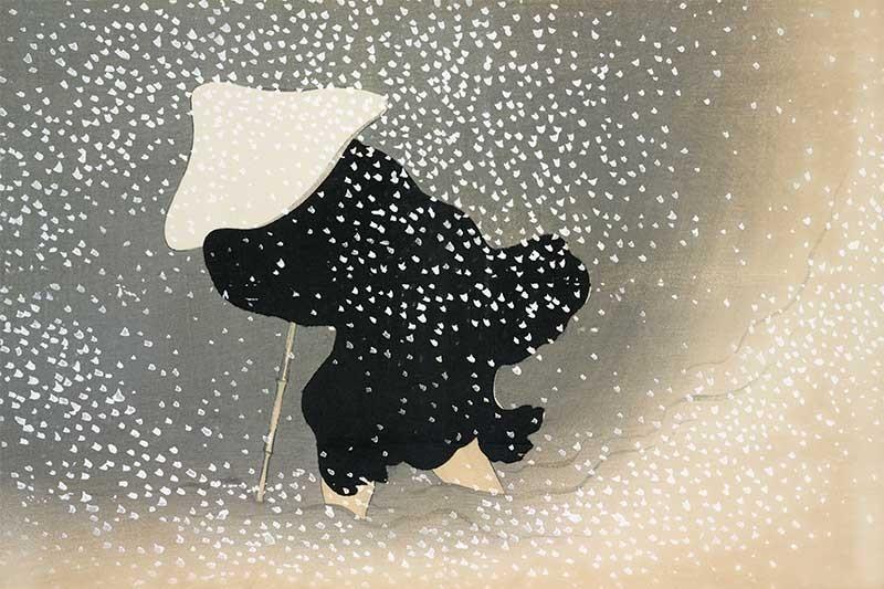 Nieve en Momoyogusa