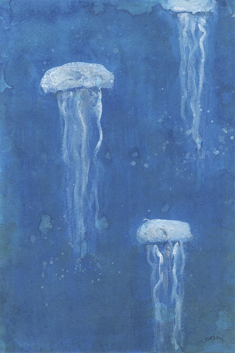 Medusas Costero
