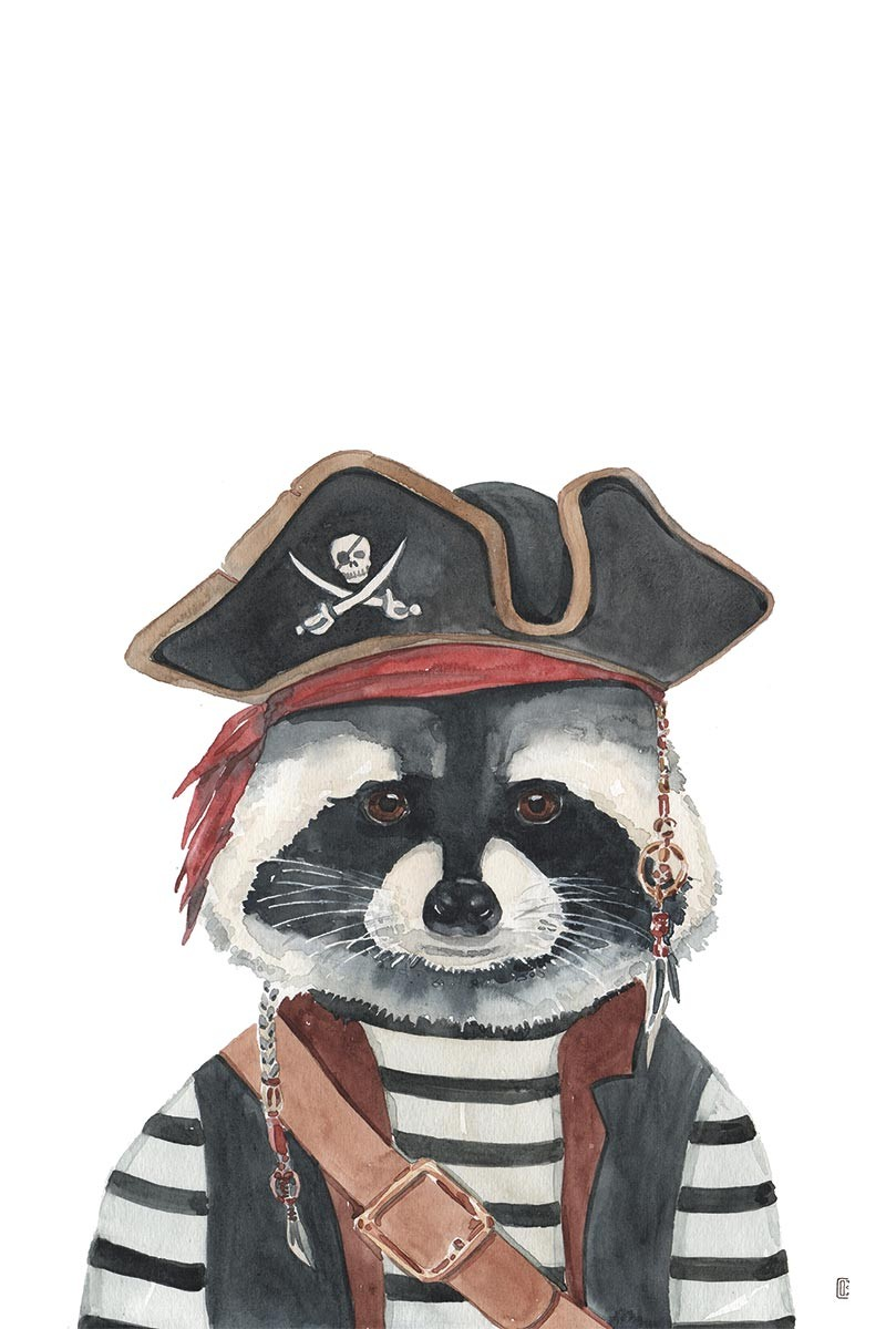 Pirate Raccoon