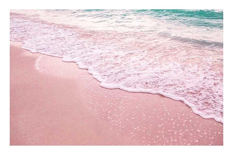 Pink Shore